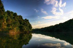 Em Nova York, Amazonastur apresenta as belezas de Anavilhanas e da Terra das Cachoeiras
