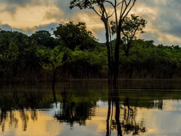 Operadores do mercado mexicano aprendem a 'vender' o turismo do Amazonas