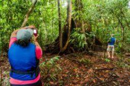Atividades de ecoturismo são retomadas em 10 Unidades de Conservação