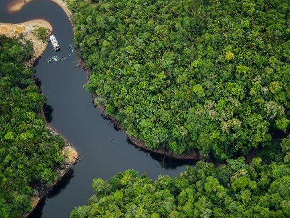 Parques de Anavilhanas e do Jaú são incluídos no Plano Nacional de Desestatização